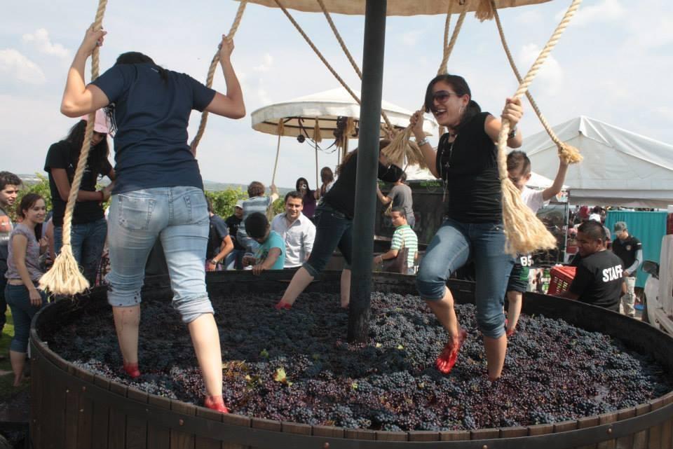 La Ruta del Vino y el Queso + Vuelo en Globo 1